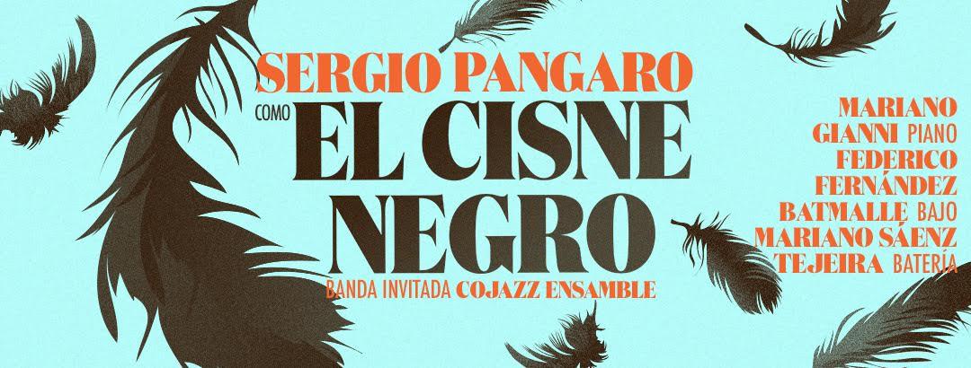 cisne_negro_afiche